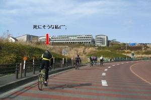 T_kokusaimura
