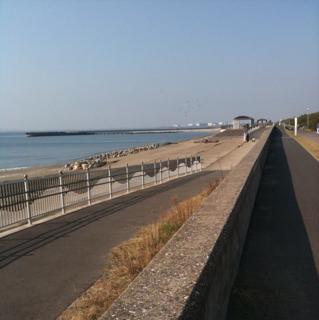 ノンビリ印旛沼